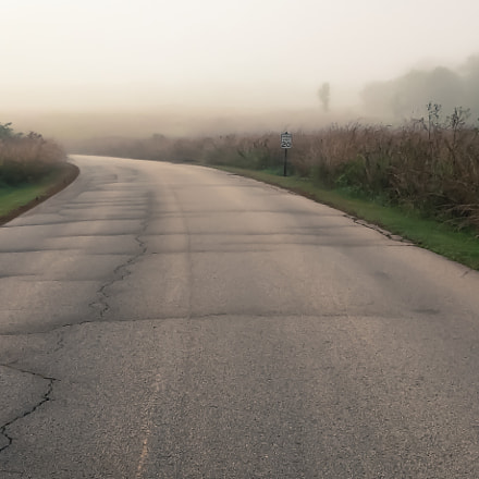 Morning foggy ride, Apple iPhone 6, iPhone 6 back camera 4.15mm f/2.2
