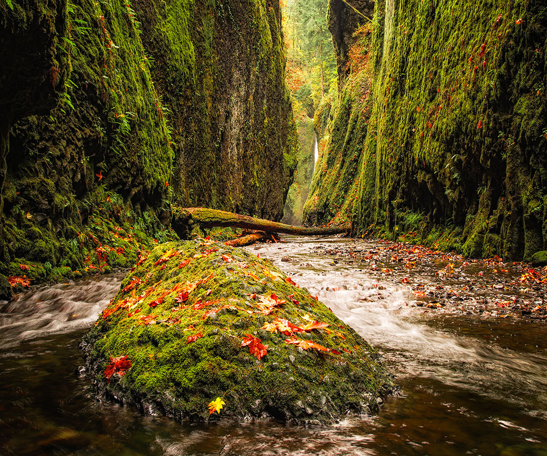 Photograph Oneonta Canyon by Ben Hearthside on 500px