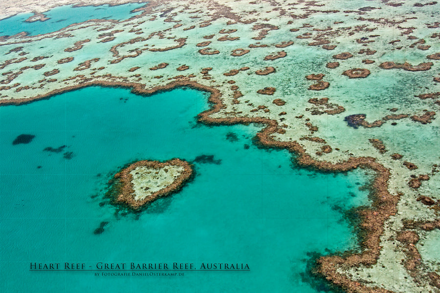 Photograph Heart Reef - Great Barrier Reef aerial Australia by Daniel Osterkamp on 500px