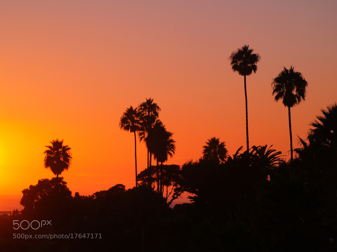 Photograph Laguna sunset by Anthony  Reed on 500px