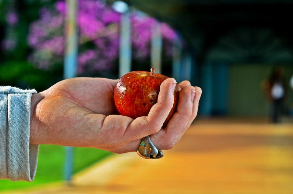 Photograph Sweet Apple by Mayra Gosch on 500px