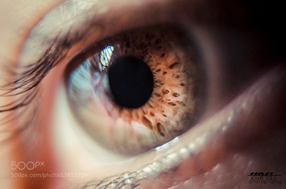 Photograph Eye Macro by Sierra Taylor on 500px