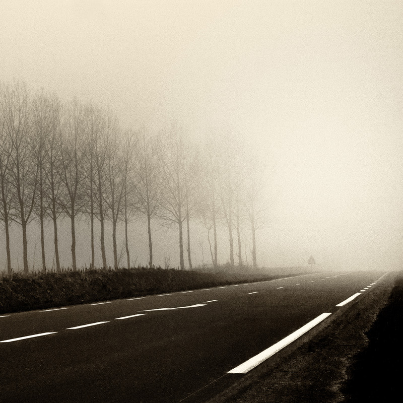 Photograph Never end road by jack kcaj on 500px