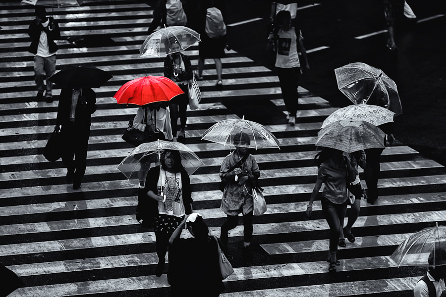 Photograph The Red Umbrella by Loic Labranche on 500px
