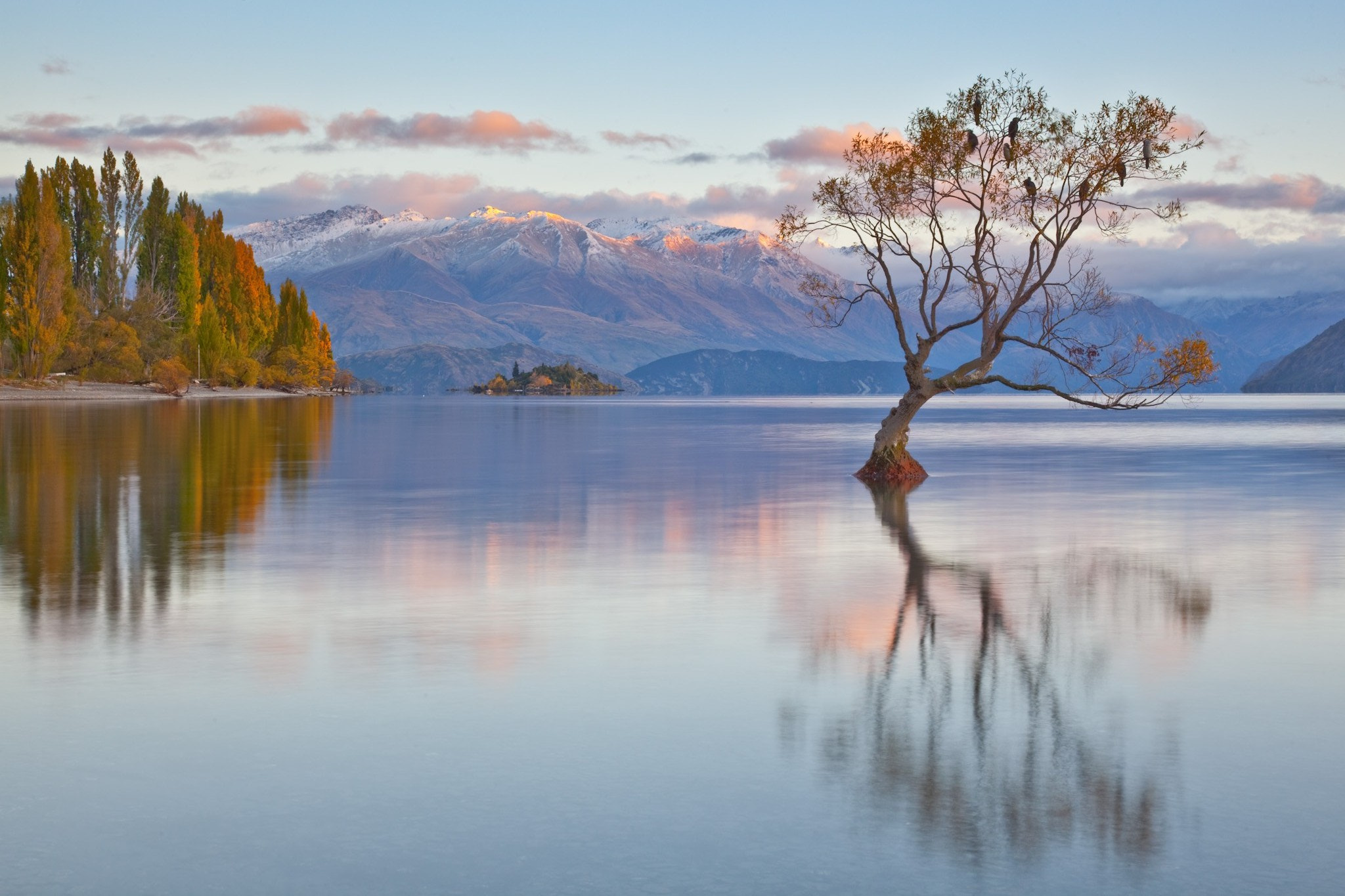 Photograph Lone Willow Lake Wanaka NZ by Colin Bradnam on 500px