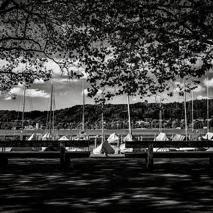 Benches on Lake Zurich, Sony ILCE-6000, Sigma 19mm F2.8 [EX] DN