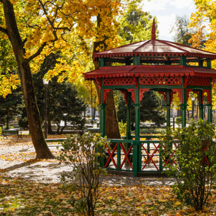 Autumn in the park, Sony SLT-A58, Sony DT 18-55mm F3.5-5.6 SAM II (SAL18552)