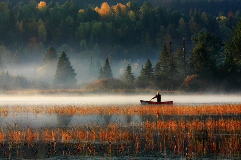 Photograph Beauty Of Fall by Anwar Ali on 500px