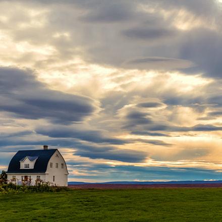 ICELAND-Mývatn-Skútustaðir