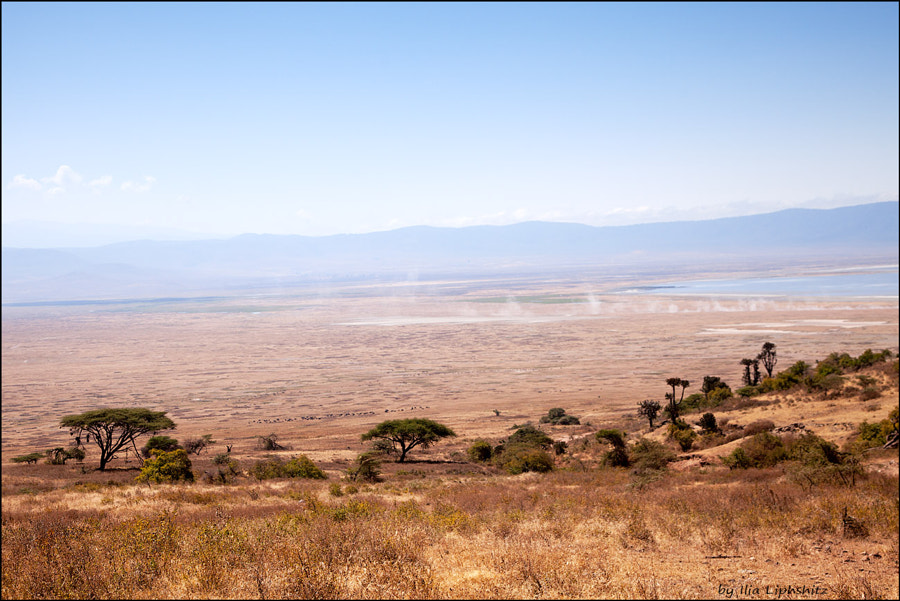 Landscapes of Ngorongoro №1