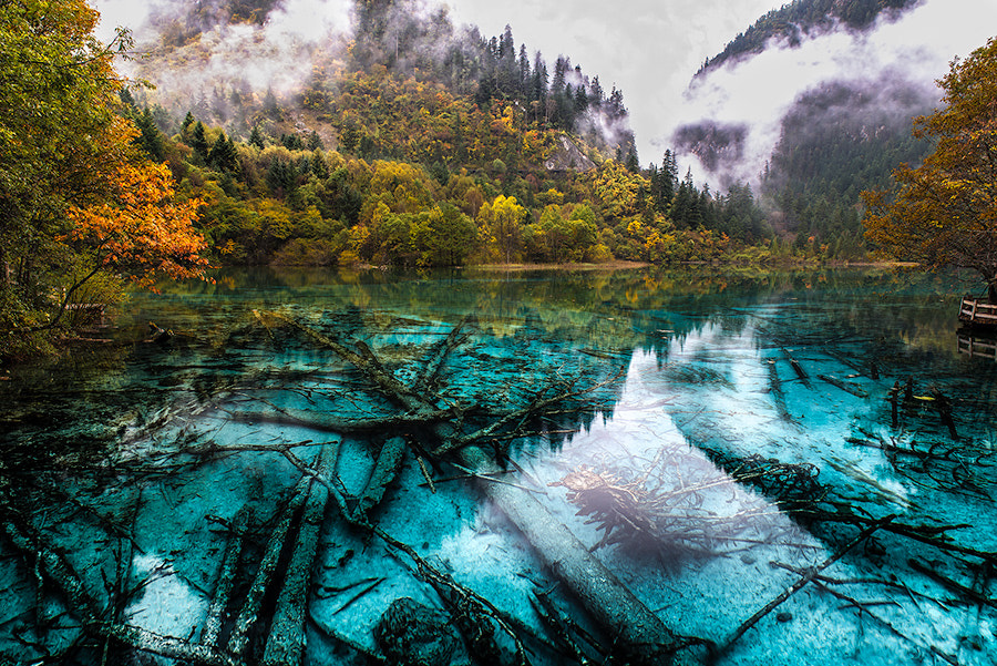 Photograph Five Colour Lake [Updated] by Evgeny Tchebotarev on 500px