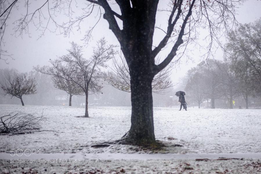 Walking through Winter Storm Athena by gevon  servo  (gservo)) on 500px.com