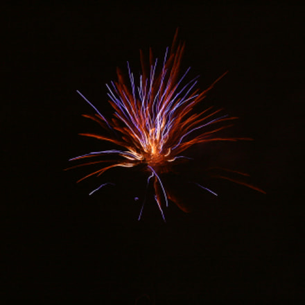 Fireworks Flower, Canon EOS 400D DIGITAL, Canon EF-S 18-55mm f/3.5-5.6 IS