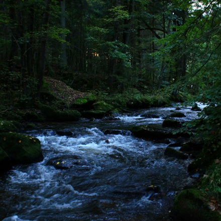 creek in the woods, Sony SLT-A57, Minolta/Sony AF DT 18-70mm F3.5-5.6 (D)