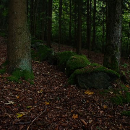 Stones with moss, Sony SLT-A57, Minolta/Sony AF DT 18-70mm F3.5-5.6 (D)