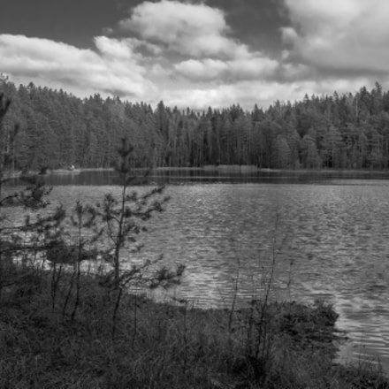 Camping at Sausage lake, Canon EOS 40D, Canon EF-S 24mm f/2.8 STM
