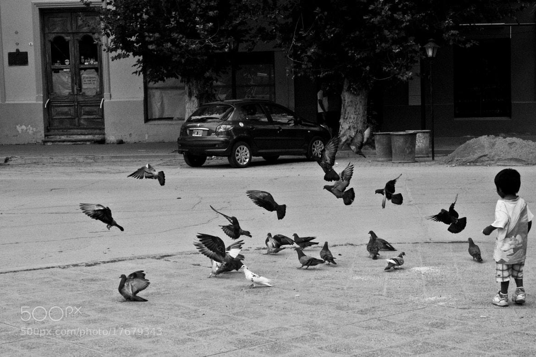 Photograph Girando en el cielo by Gonzalo Perin on 500px