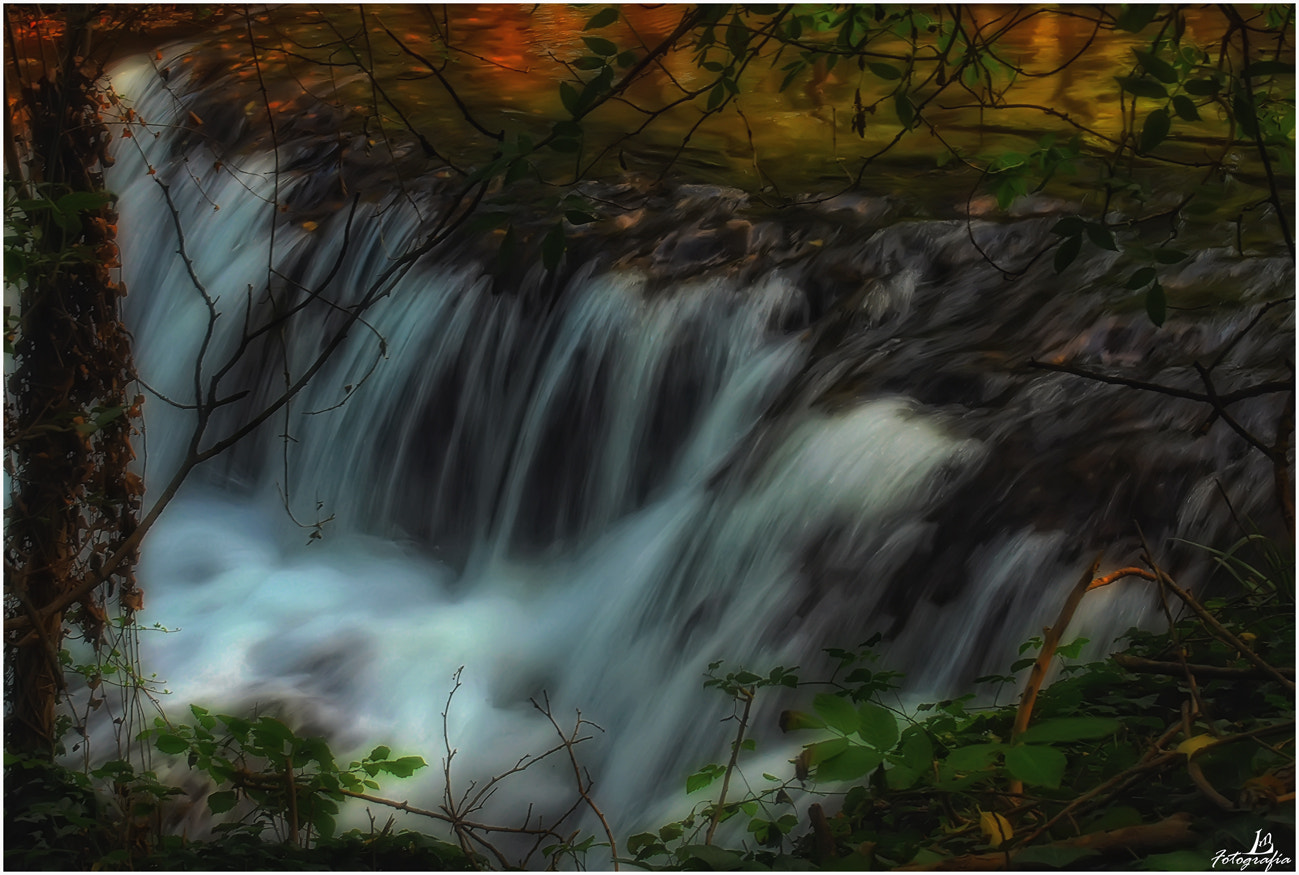Photograph Waters of autumn by Manuel Lancha on 500px