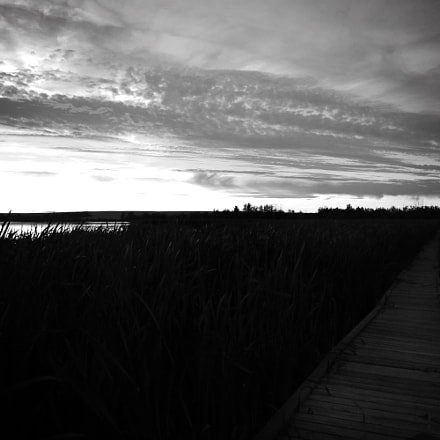 Black and White Boardwalk, Canon EOS REBEL T6I, Canon EF-S 18-55mm f/3.5-5.6 IS STM