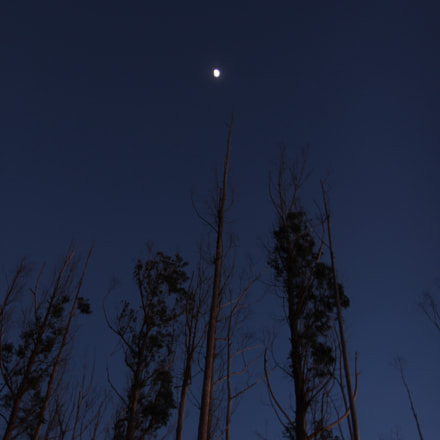 Moonlight on the Mountain, Canon EOS 1100D, Canon EF-S 17-55mm f/2.8 IS USM