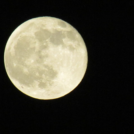 Moon over the bay, Canon POWERSHOT SX30 IS