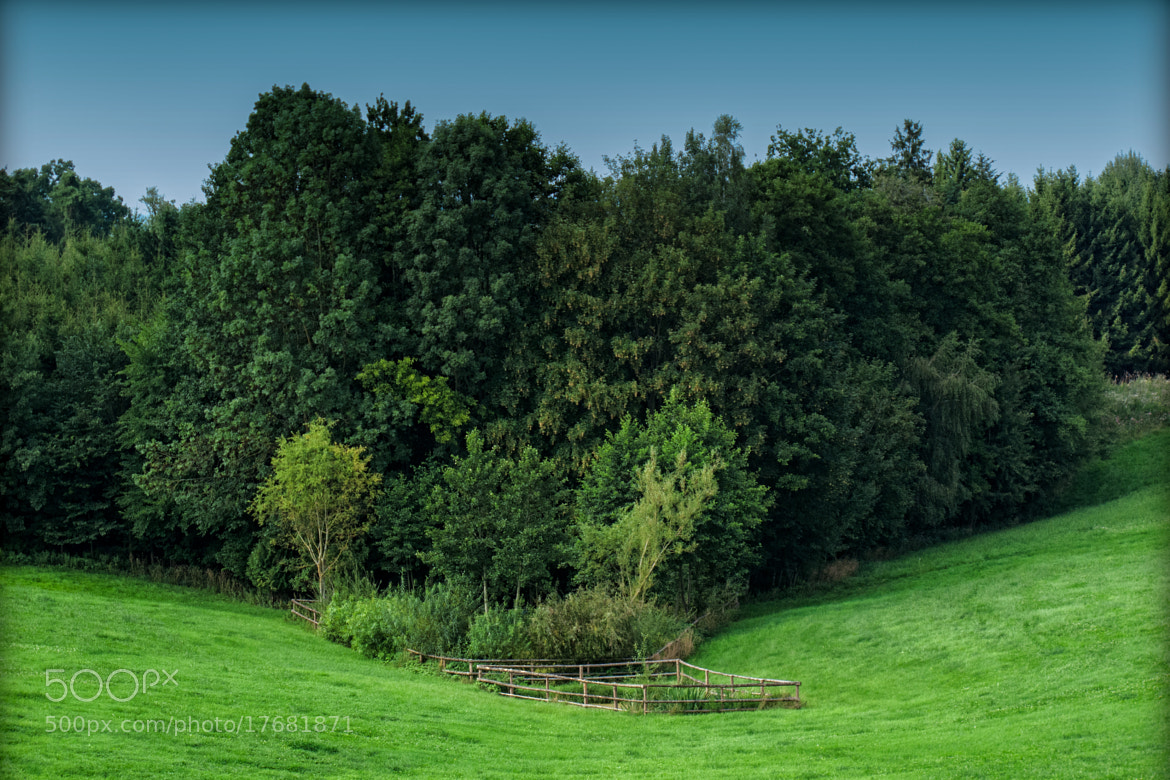 Photograph The Pond by Georg Tueller on 500px