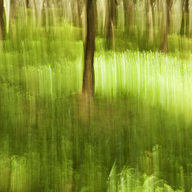 Abstract Impressionist Landscape by Satheesh Nair (ifotoman)) on 500px.com
