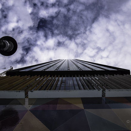 Looking Up, Nikon D7200, AF-S DX Nikkor 10-24mm f/3.5-4.5G ED