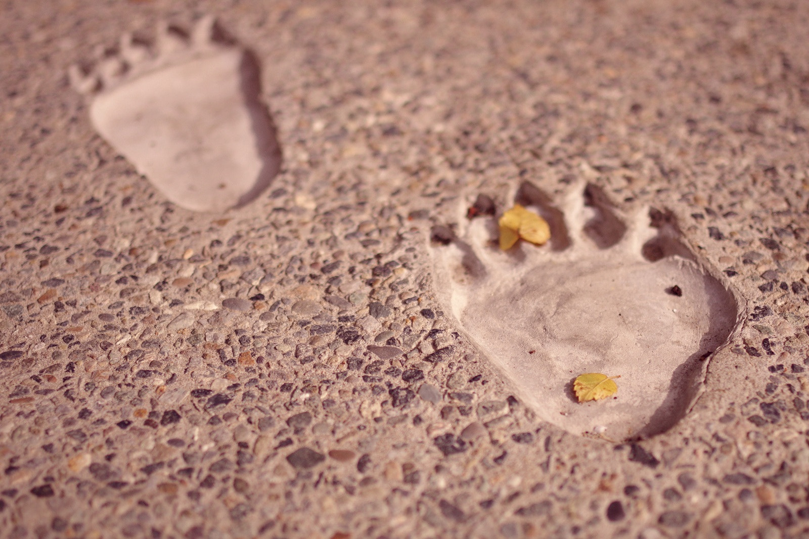 Photograph Foot by yurika marui on 500px