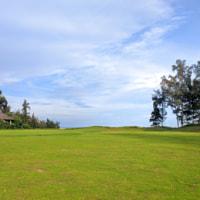 Greeen field