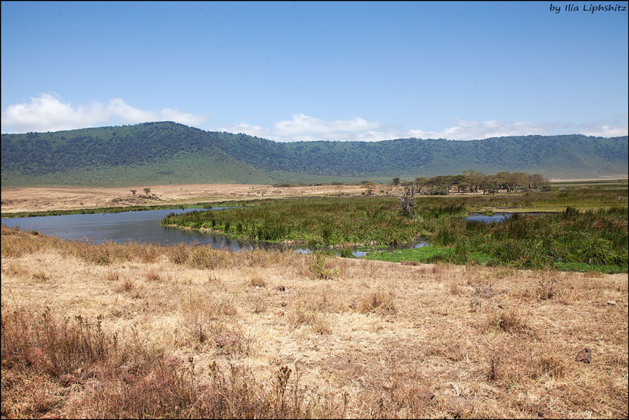 Landscapes of Ngorongoro №8
