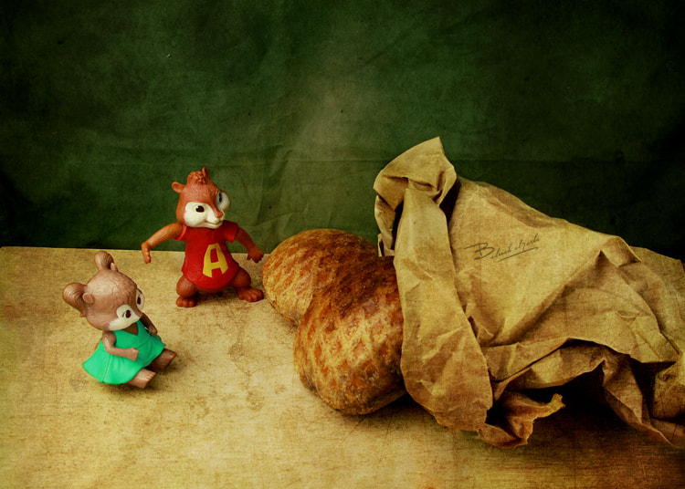Photograph Alklija and the chipmunks 2 by بدرية الاحمدي on 500px