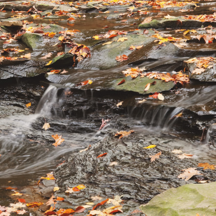 falltime falling water, Canon EOS 30D, EF-S17-55mm f/2.8 IS USM