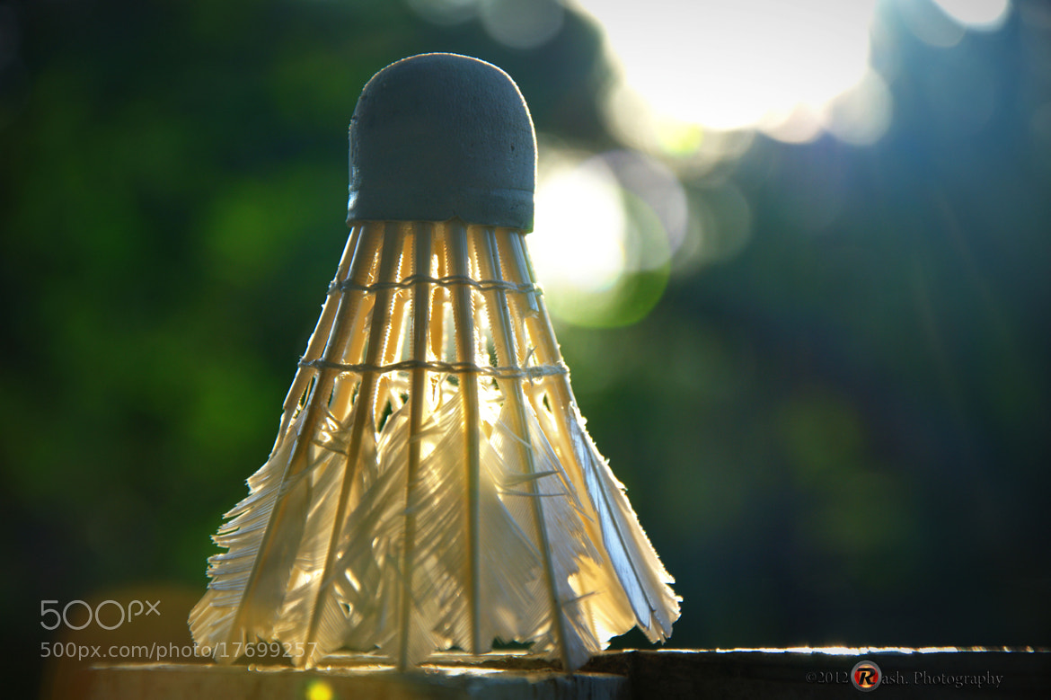 Photograph Bokeh try out by Fadiel Baksoellah on 500px