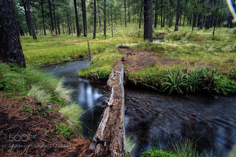 Photograph Mini bridge and river by Cristobal Garciaferro Rubio on 500px
