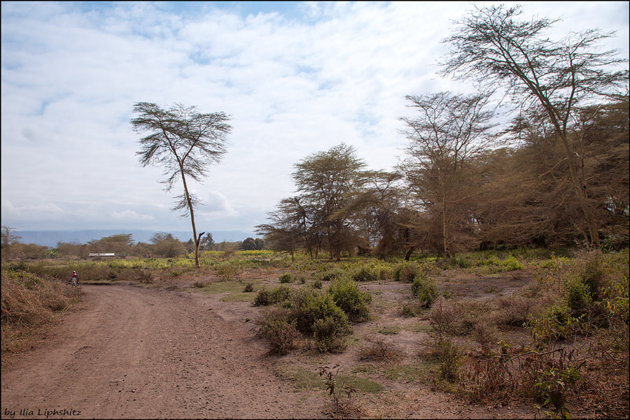 Landscapes of Tanzania №3