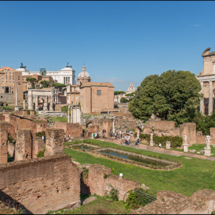 Roman Forum, Nikon D610, Sigma 24-70mm F2.8 IF EX DG HSM