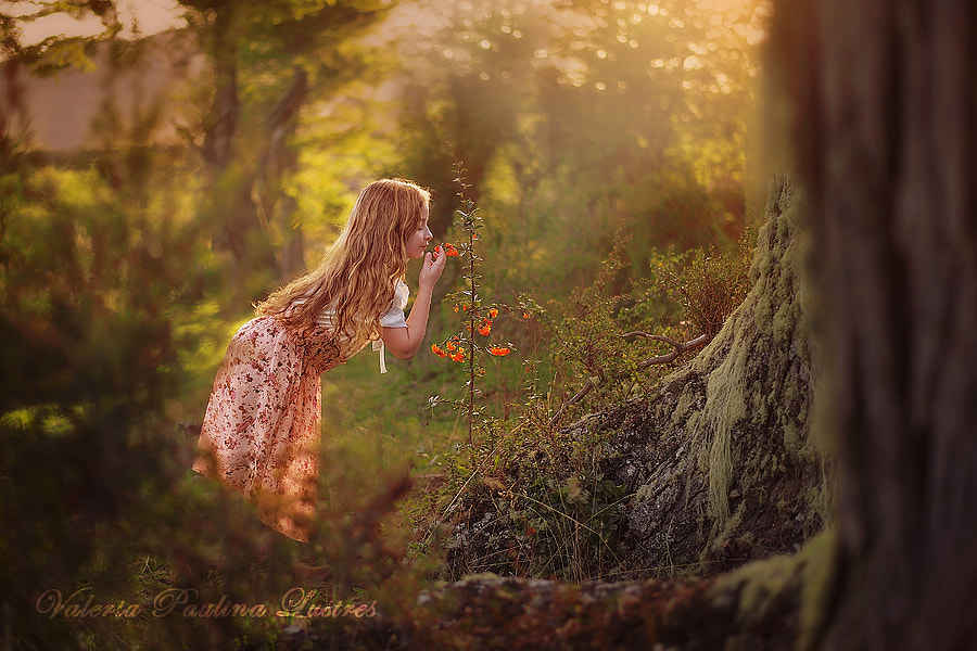Spring has arrived by Valeria Paulina Lustres on 500px.com