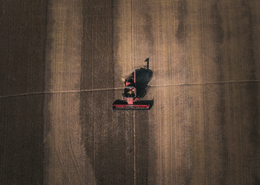 Harvest by Michael Tighe on 500px.com