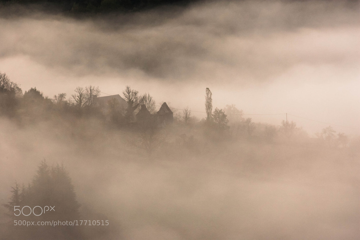 Photograph Fog and Cie by Nicolas SALVA on 500px