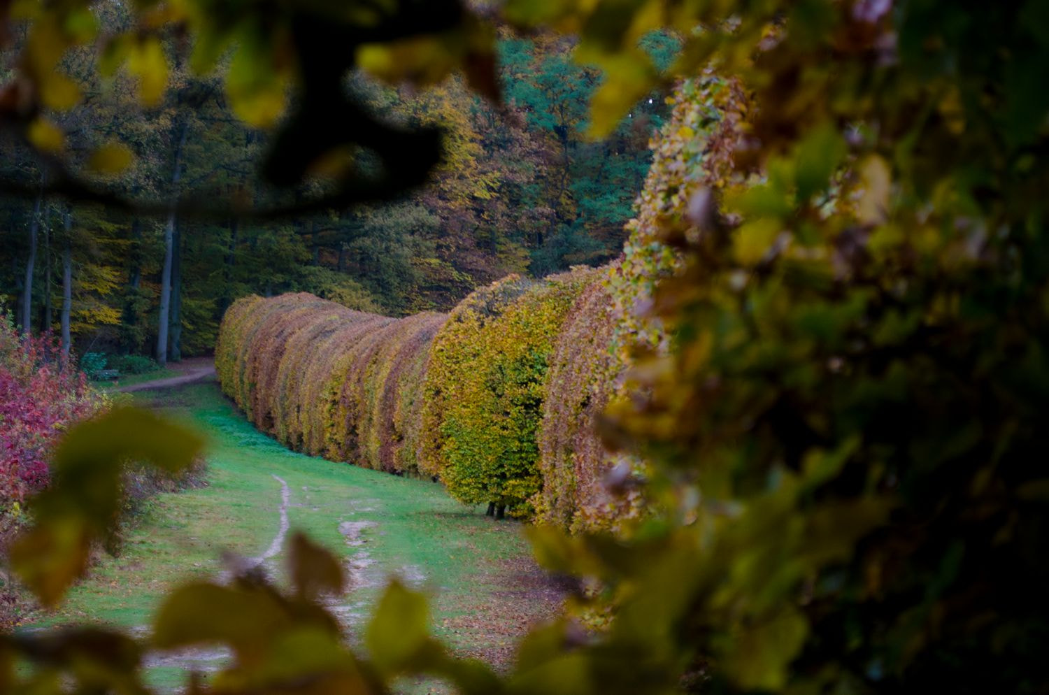 Photograph Mariendaal Oosterbeek by Happy Peppie on 500px