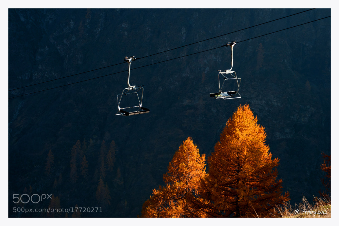 Photograph Over the trees by Regina F on 500px