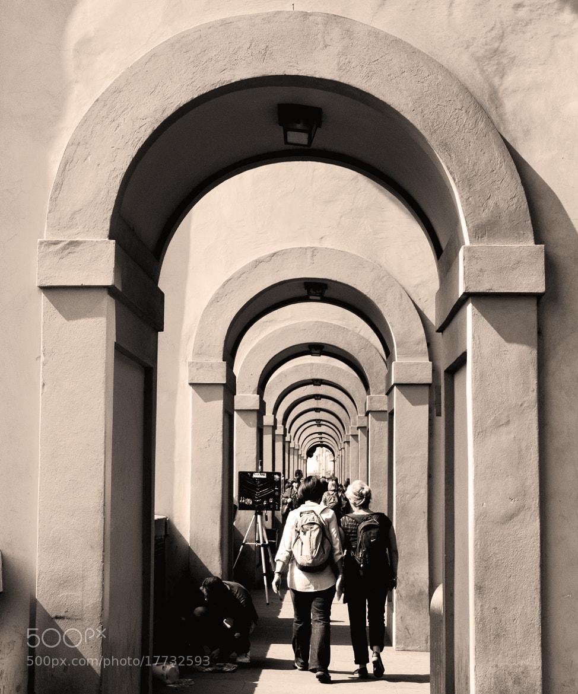 Photograph Curvas by Luis Sánchez Olmedo on 500px