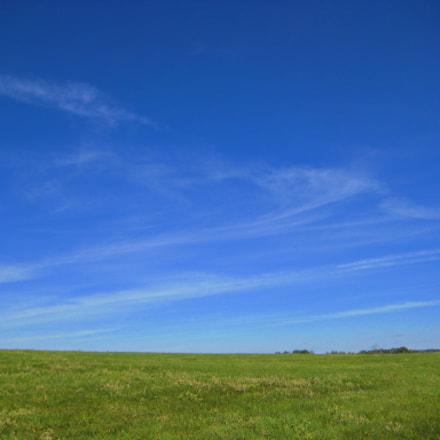 Blue Skies and Green, Canon POWERSHOT SD1000