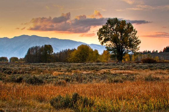 Photograph Field at Twilight by Jack Booth on 500px