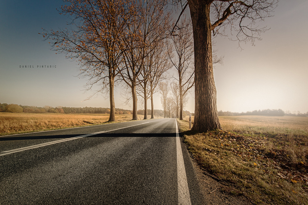 Photograph On the road again! by Daniel Pintaric on 500px