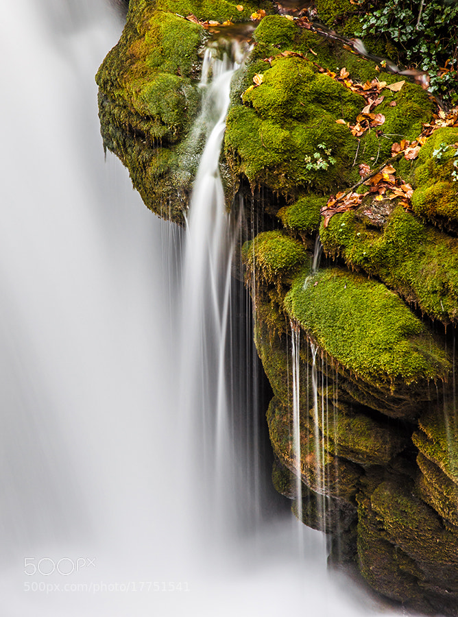 Photograph The hair of the water by José Manuel Hermoso on 500px