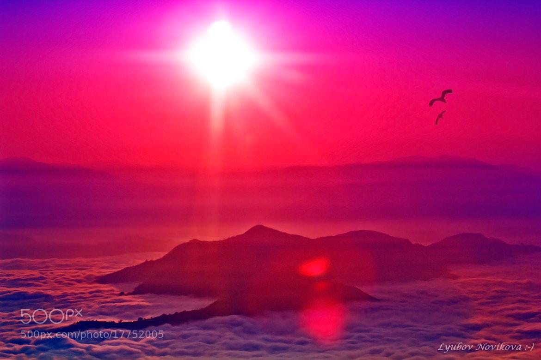 Photograph The rising sun. by Lyubov Novikova on 500px