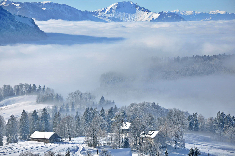 Photograph Winter fairytale by Svjetlana Peric on 500px