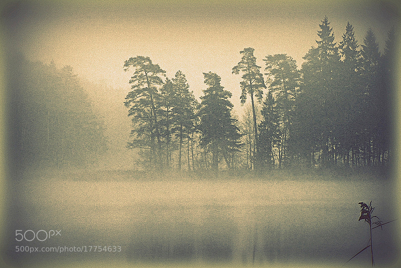 Photograph Autumn portrait by **  REgiNA  **  on 500px